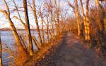Daybreak on the towpath